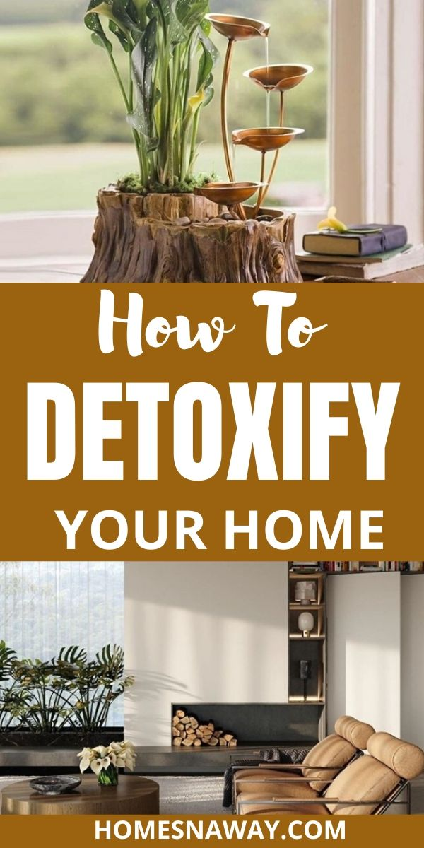 10 Best Ways to Detoxify your Home