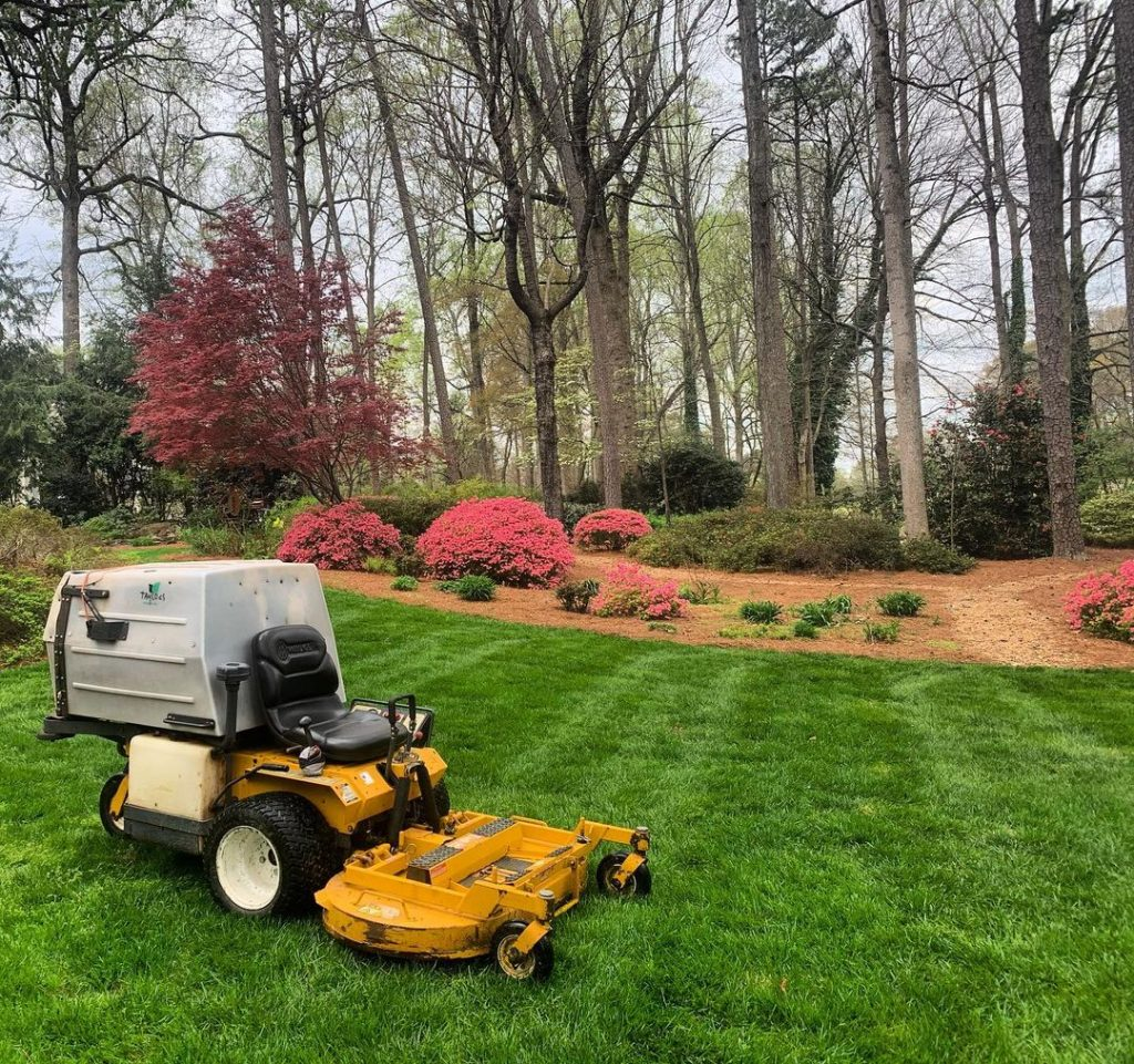 10 Eco-Friendly Methods of Weed Control For Your Lawn & Garden