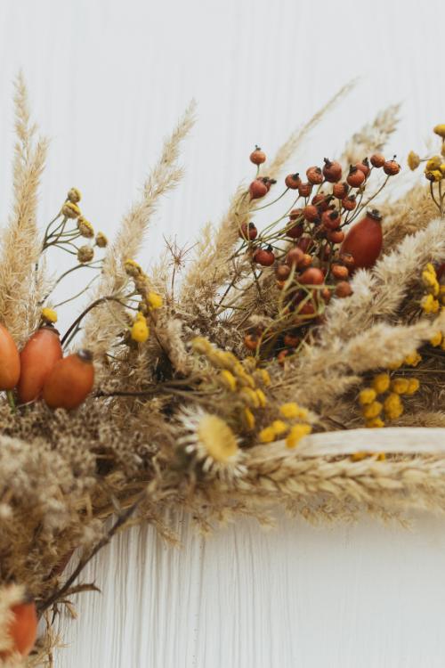 Diy Halloween Wreath Ideas: Fall Front Door Decor